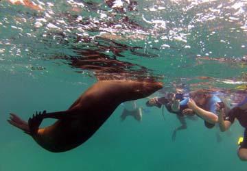 Peru You - On The Sea