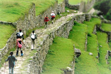 Arrival to the terraces of the Machu Picchu Ruins