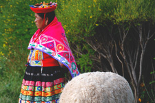 Traditionally dressed woman at Awanacancha in the Sacred Val