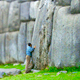 Man reposing against stones of Sacsayhuaman Fortress in Cusc