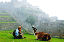 Sitting with llama at Machu Picchu Archeological Complex in