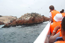 Boat trip through the Paracas Reserve in Ica, Peru, near Lim