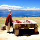 Ritual offering at stone table on Sun Island in Lake Titicac